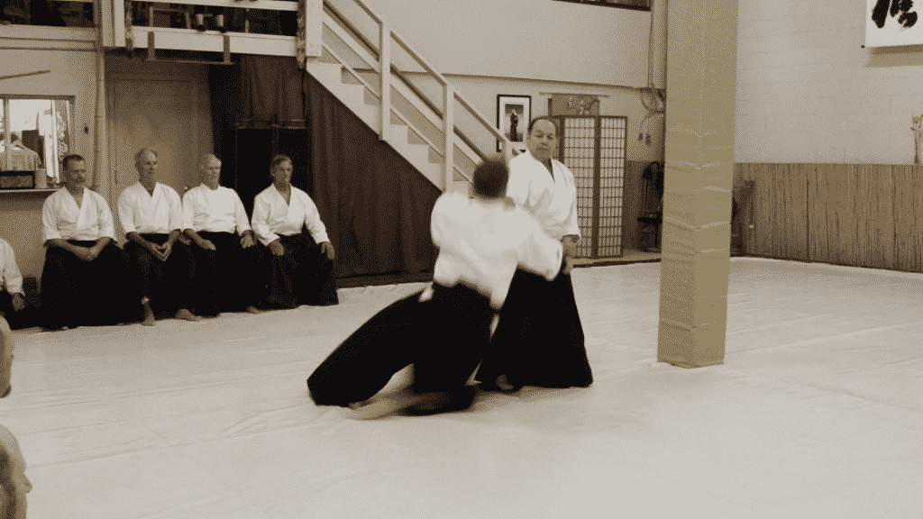 Frank Bloksberg and Mark Zwagerman demonstrate aikido
